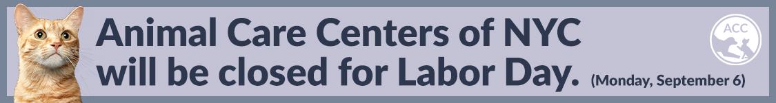 ACC Closed Labor Day
