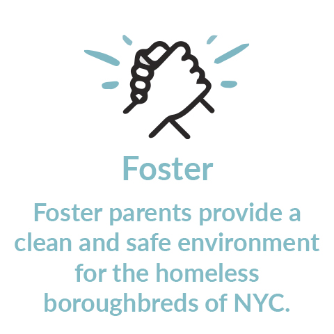 Foster Footer 3