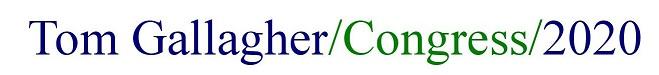 Tom Gallagher Congress 2020 Official Campaign Announcement @ Bernal Heights Neighborhood Center