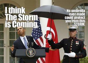 Im Sturm Obama