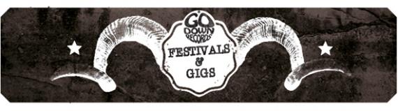 Festival & gigs