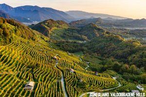 Conegliano Valdobbiadene Hills _photo credits Arcangelo Piai_2 - Copia