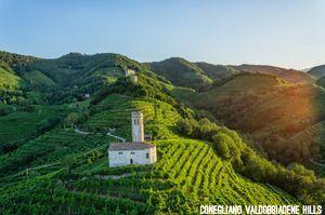 Conegliano Valdobbiadene Hills_photo credits Arcangelo Piai