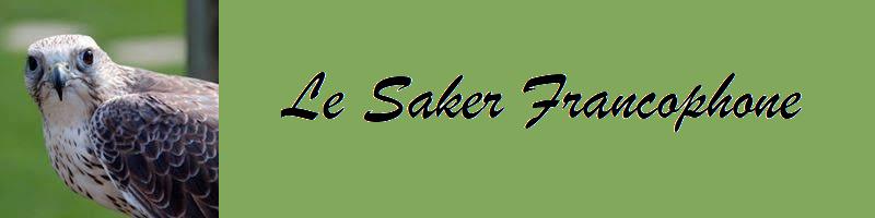 saker_bandeau