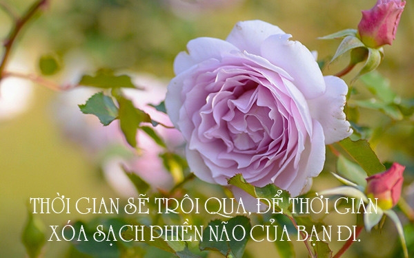 Image result for thoi gian photos