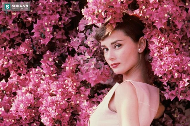 Có một ngôi sao cô đơn mang tên Audrey Hepburn - Ảnh 1.