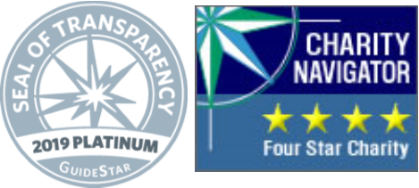 2019 GuideStar + CN logos