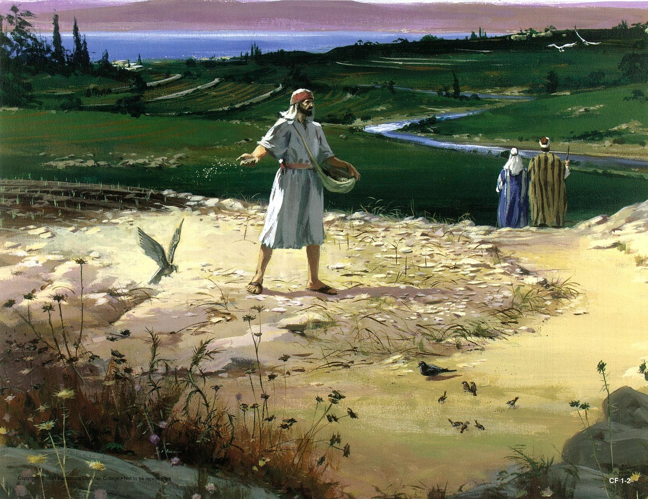 Parable-Sower