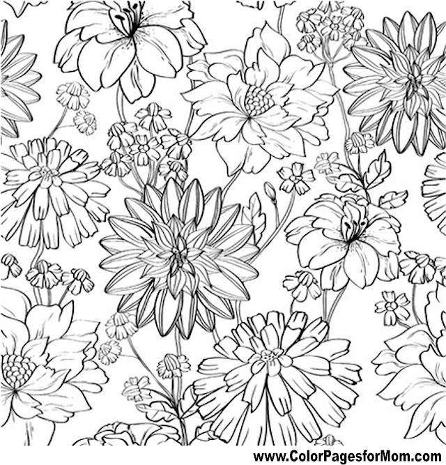 Flower Coloring Page 81