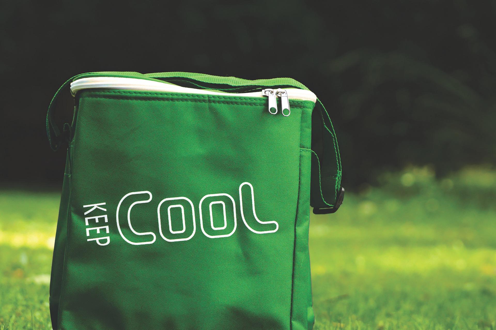 cooler-bag-4812757_1920.jpg