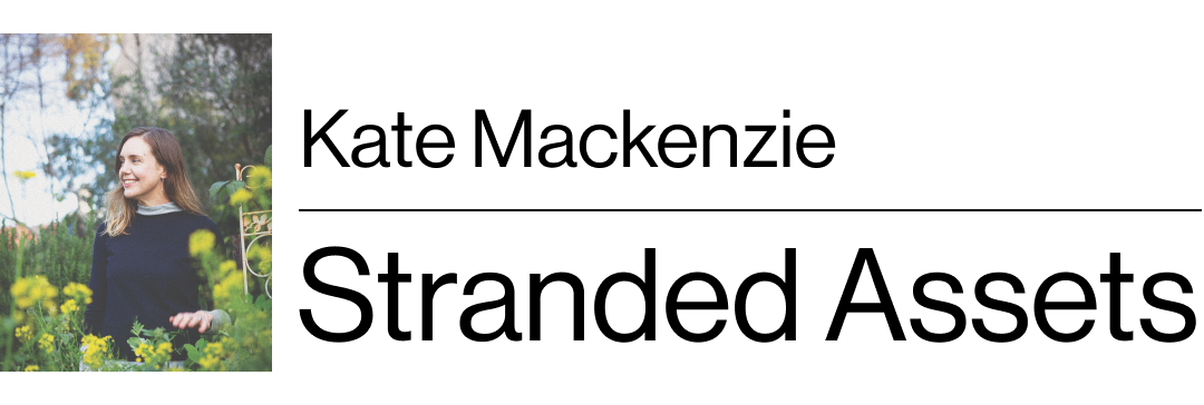 Kate Mackenzie's Stranded Assets