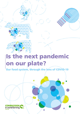 Is the next pandemic on our plate report cover