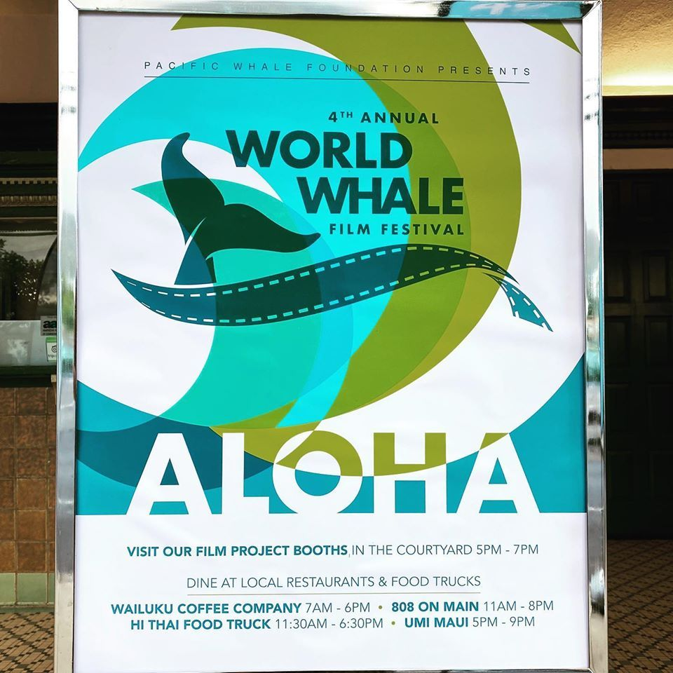 maui whale film festival2