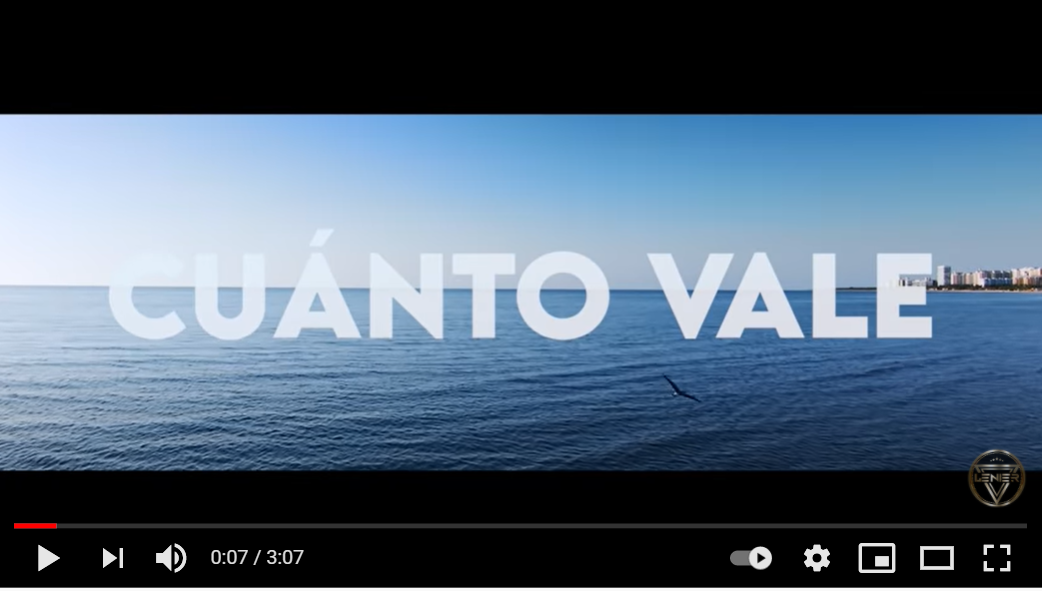 VIDEO CUANTO VALE