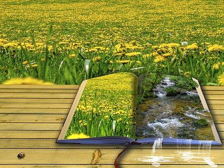 Facebook Images - Téléchargez des images gratuites - Pixabay