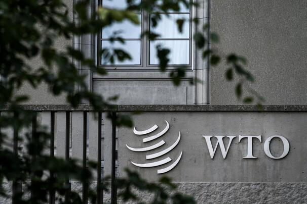display-wto-gettyimages-1037108042