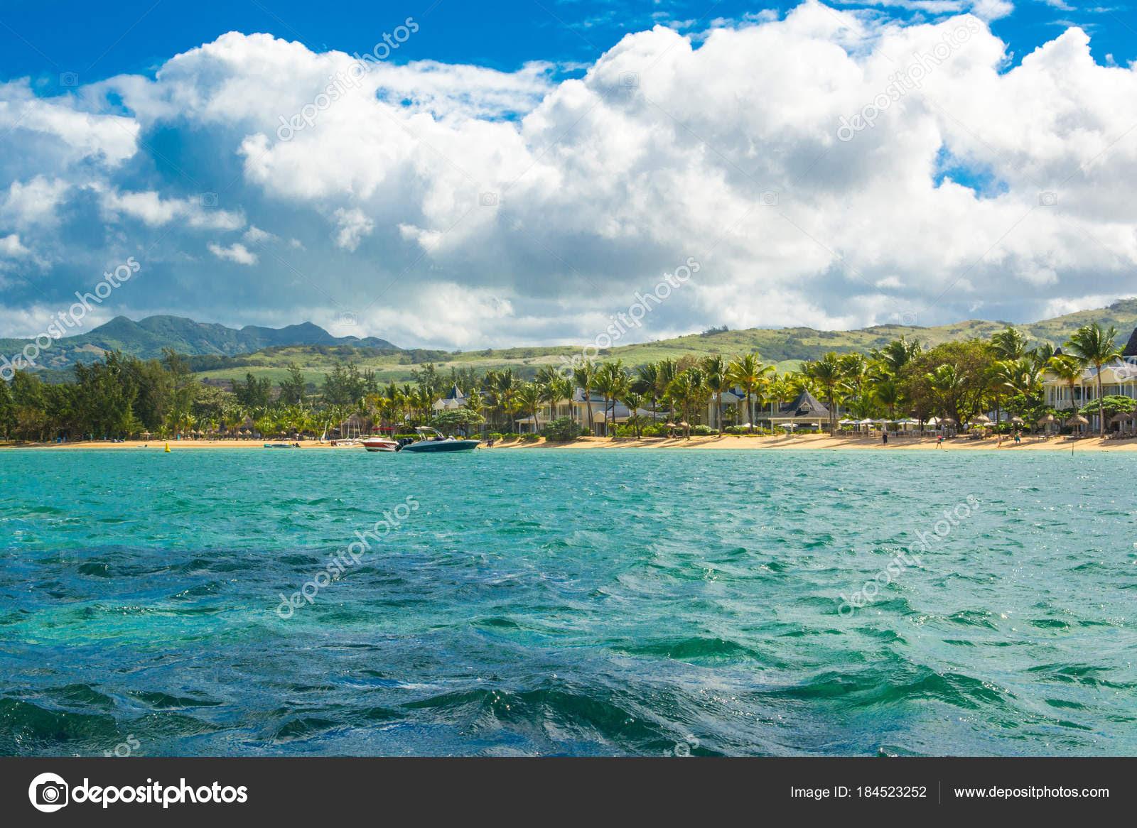 Image result for Tropische hitte/palmen/Foto's