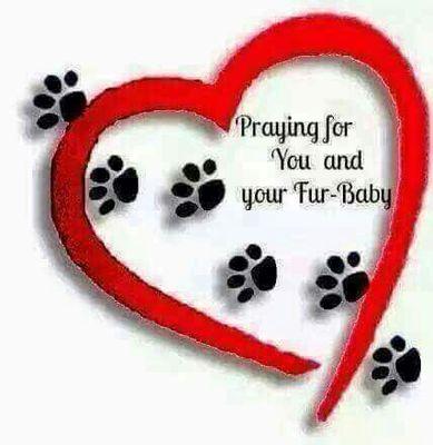 62d9dc97c2c4324f9bdc41d97995e726--sending-prayers-prayer-for.jpg