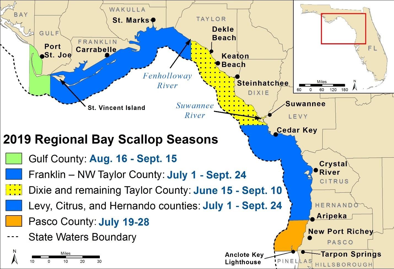 2019 Regional Bay Scallop Seasons