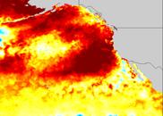 marine heat 2