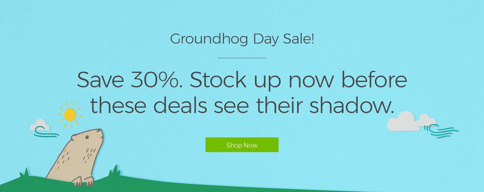 Cricut: Groundhog Day Sale! - Lovin' the Prize of Life