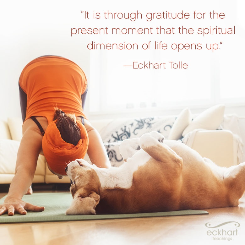 """It is through gratitude for the present moment that the spiritual dimension of life opens up."""