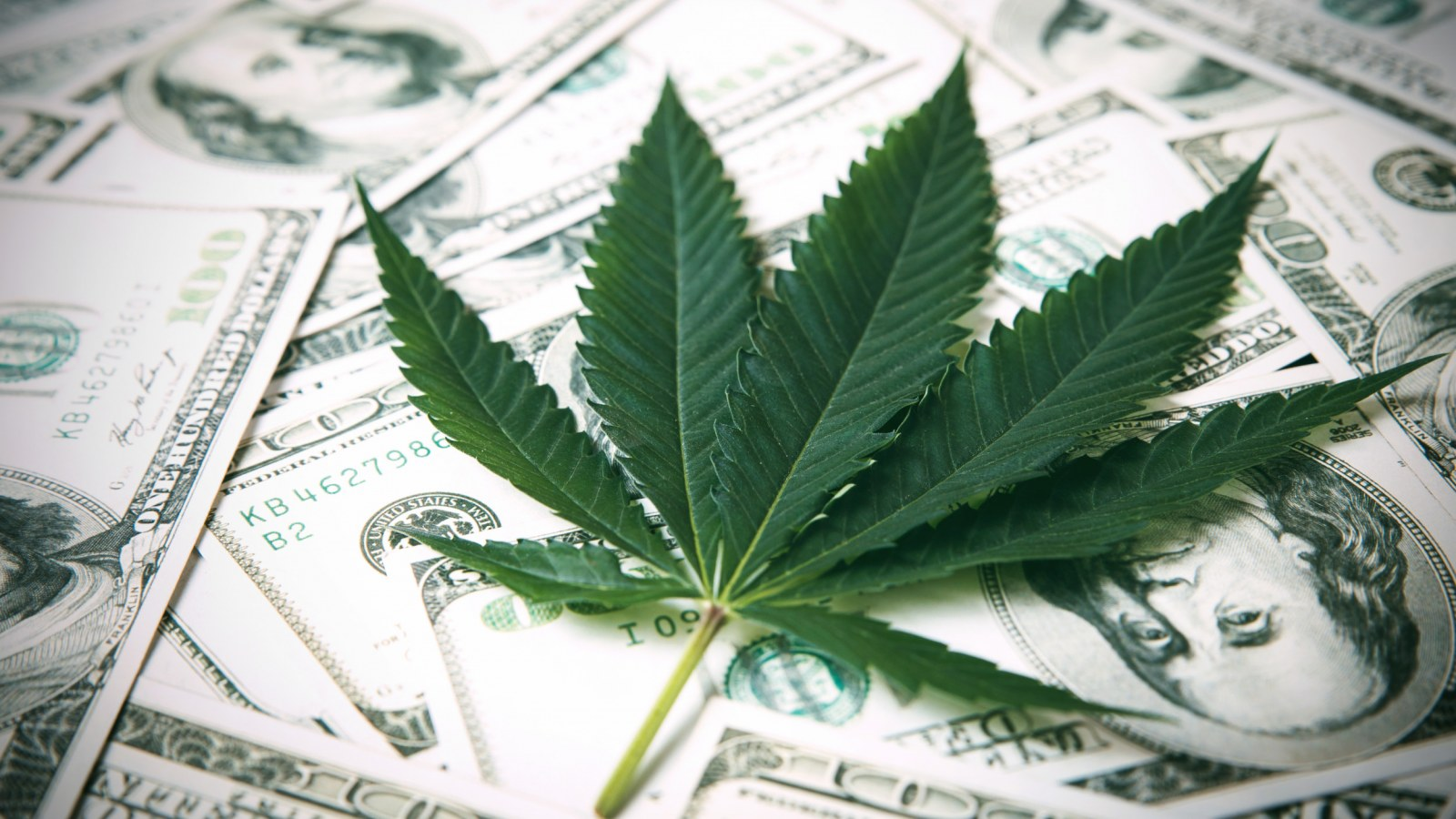 marijuana-legalization.jpg