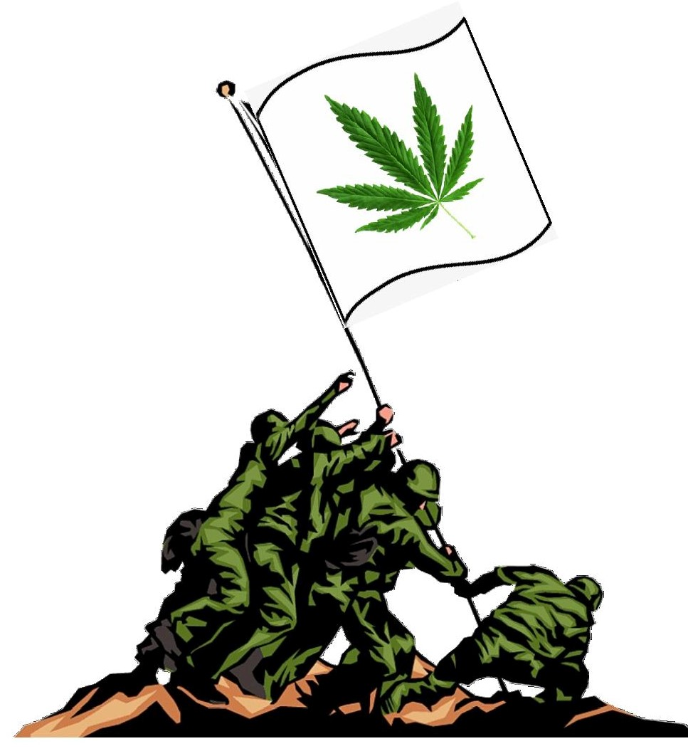 veterans_raise_pot_flag-page-001.jpg