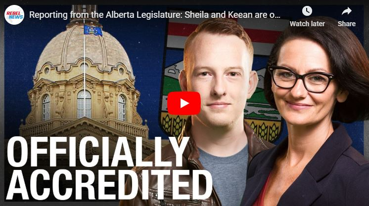 Reporting from the Alberta Legislature: Sheila and Keean are officially in the Press Gallery