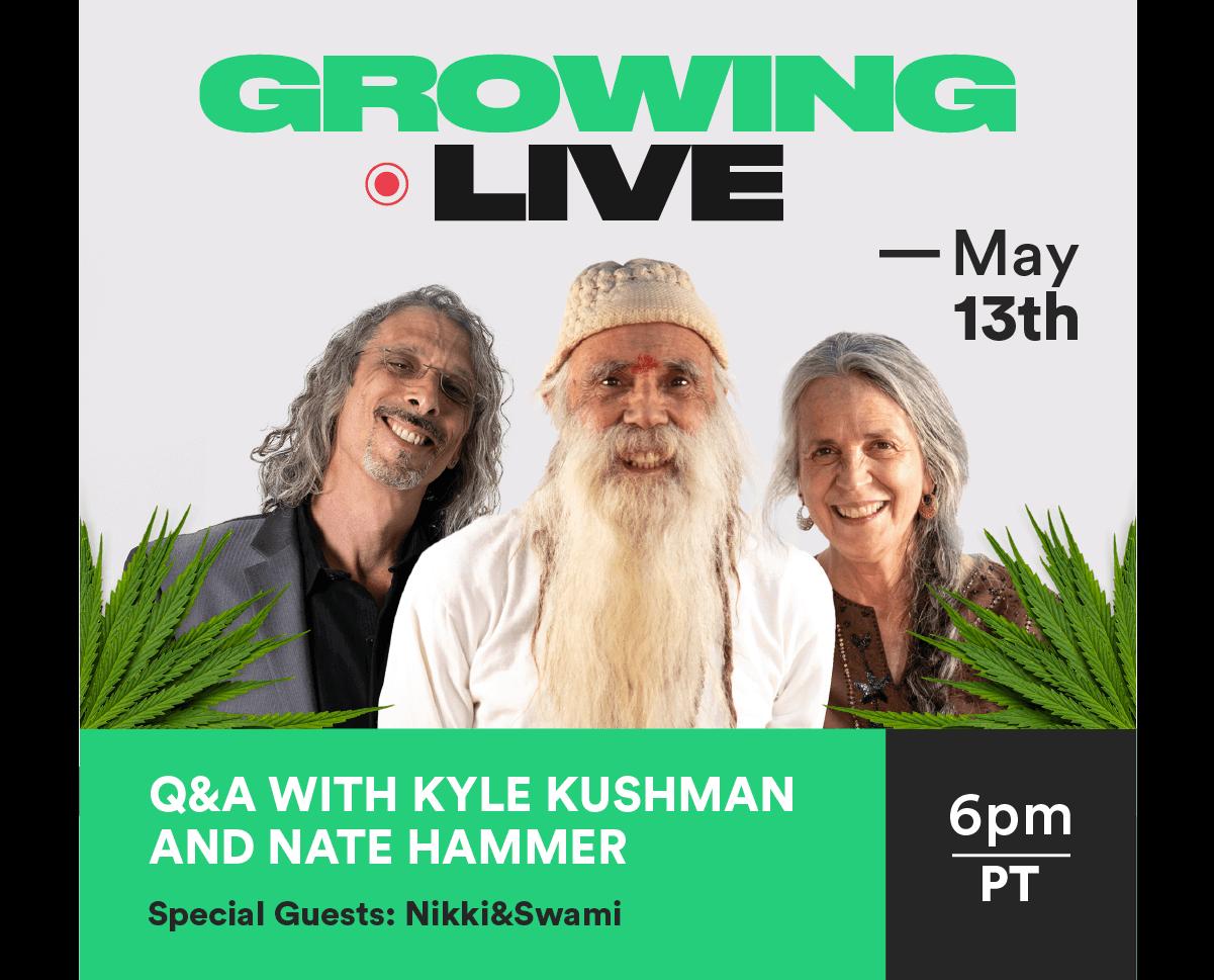 growing_live_kyle_kushman