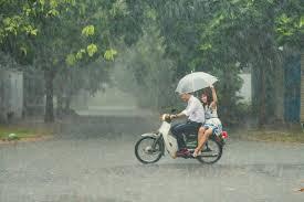 Những bức ảnh tuyệt đẹp này sẽ khiến bạn nhận ra, trong mưa, cuộc đời vẫn  dịu dàng đến thế