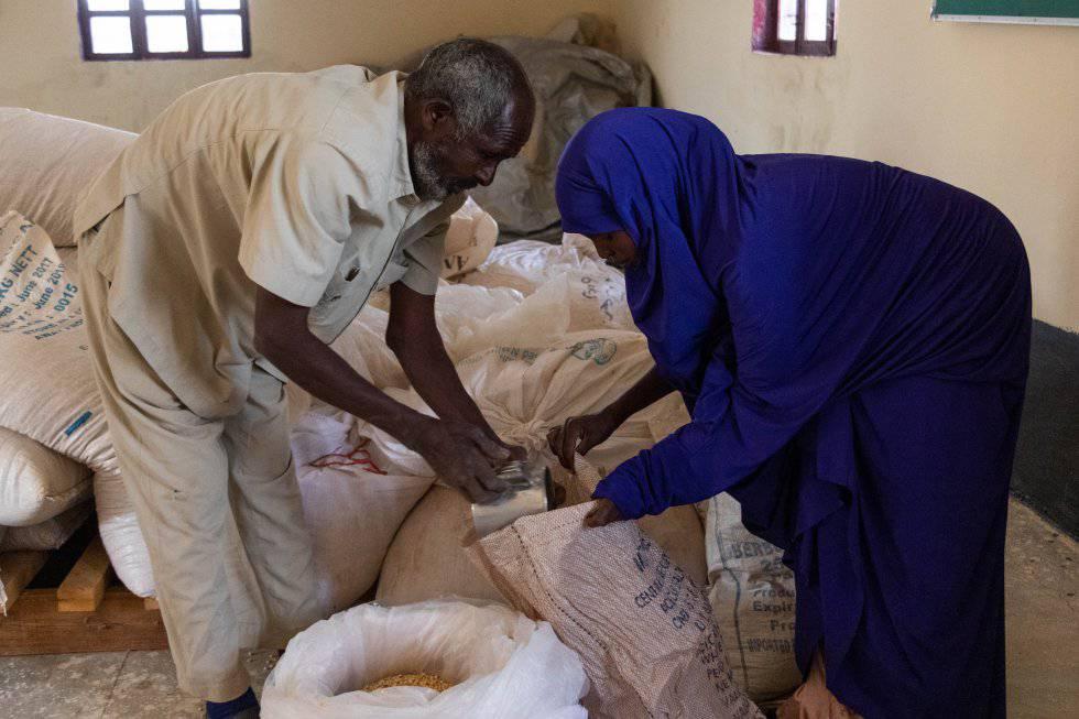 Una mujer recoge semillas resistentes a la sequía e inmunes a las enfermedades en el banco de semillas organizado por Havoyoco en Galoley, Somalilandia.