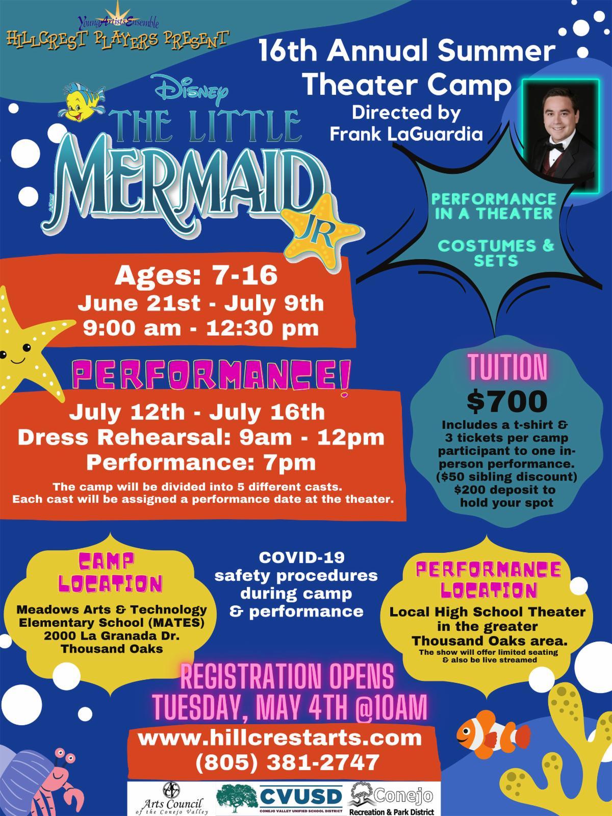 Mermaid Camp Flyer