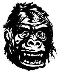 GorillaLooksRight
