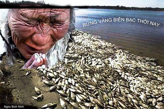 Image result for cá chết formosa
