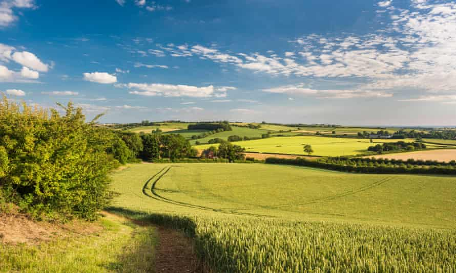 Rural landscape in the Lincolnshire Wolds