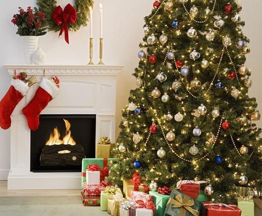 Hình ảnh ngày 24/12 còn gắn liền với sự ra đời của cây thông Giáng sinh.