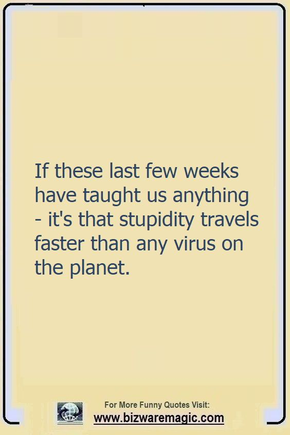 If these last weeks have taught                                                          us anything -                                                          it's that                                                          stupidity                                                          travels faster                                                          than any virus                                                          on the planet.                                                          Click The Pin                                                          For More Funny                                                          Quotes. Share                                                          the Cheer -                                                          Please Re-Pin.                                                          #funny                                                          #funnyquotes                                                          #quotes                                                          #quotestoliveby                                                          #dailyquote                                                          #wittyquotes                                                          #2020 #joke                                                          #COVID19                                                          #coronavirus                                                          #pandemic                                                          #TheDragonflyChallenge