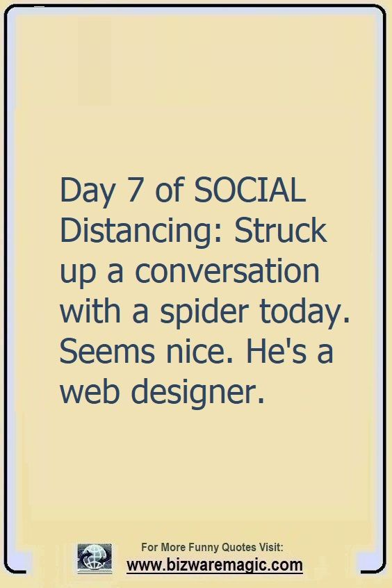 Day 7 of social distancing:                                                          Struck up a                                                          conversation                                                          with a spider                                                          today. Seems                                                          nice. He's a                                                          web designer.                                                          Click The Pin                                                          For More Funny                                                          Quotes. Share                                                          the Cheer -                                                          Please Re-Pin.                                                          #funny                                                          #funnyquotes                                                          #quotes                                                          #quotestoliveby                                                          #dailyquote                                                          #wittyquotes                                                          #oneliner                                                          #joke #puns                                                          #TheDragonflyChallenge