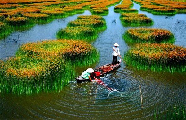 Kết quả hình ảnh cho Quê hương Việt Nam tôi  hd photos