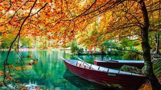 Thơ hoạ Nguyễn Thành Sáng & Tam Muội (1404) Mail?url=https%3A%2F%2Fi.postimg.cc%2F90tbz8h0%2FAutumn-lake-beautiful-turquoise-water-trees-hd-wallpaper-73142-9