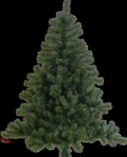 TREE-TRANSP