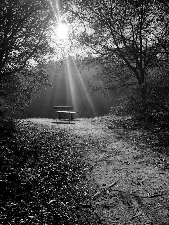 Solitude-by-Maria-Popova.jpg?resize=680%2C907