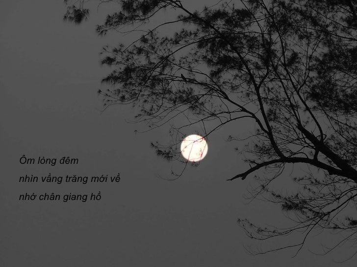 Trịnh Công Sơn - Phôi pha