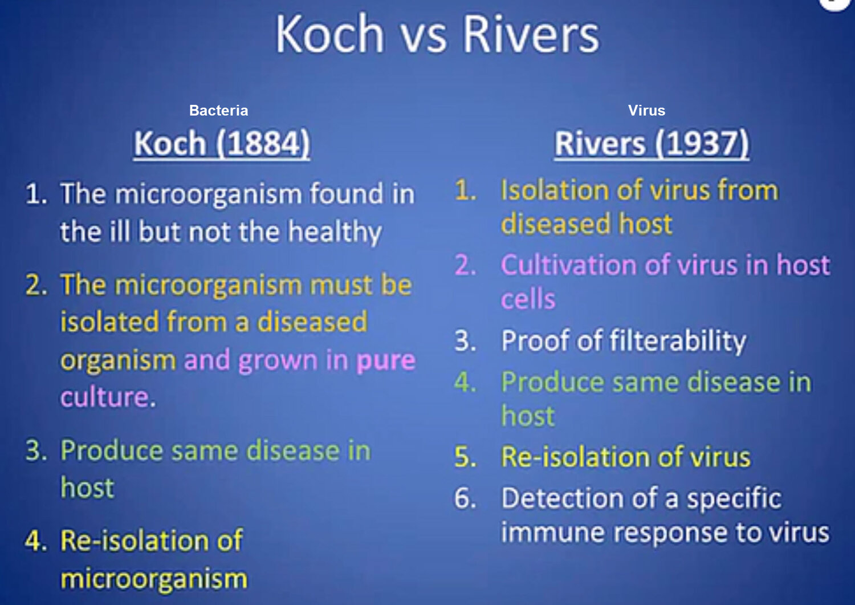 Koch-Rivers-Postualtes.jpg