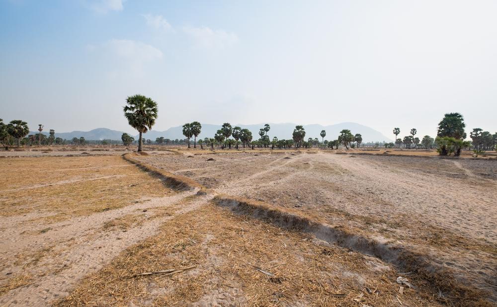Những quốc gia chung dòng Mekong đều chịu ảnh hưởng mạnh của dòng chảy suy giảm của con sông này trong những năm gần đây.