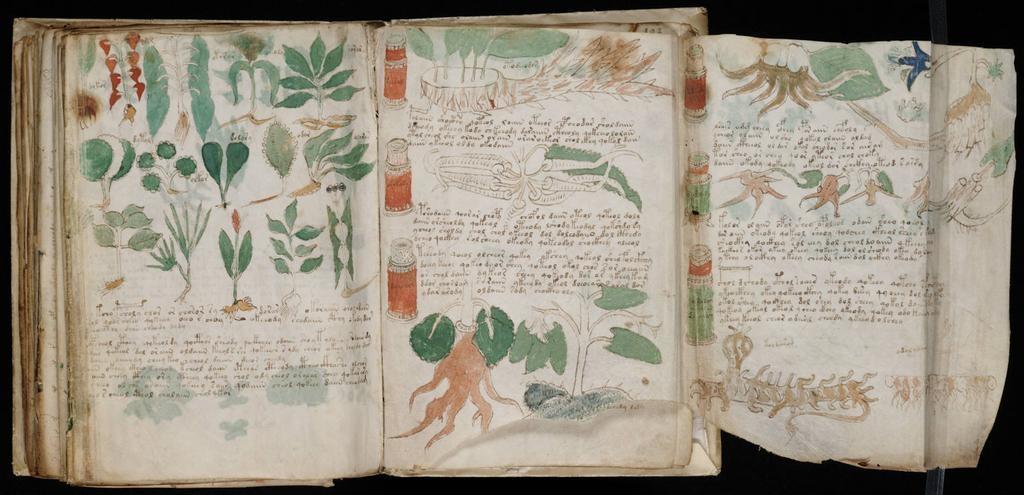 Bản thảo Voynich có vẻ giống với một cuốn Bách khoa toàn thư về tự nhiên, vũ trụ và con người.
