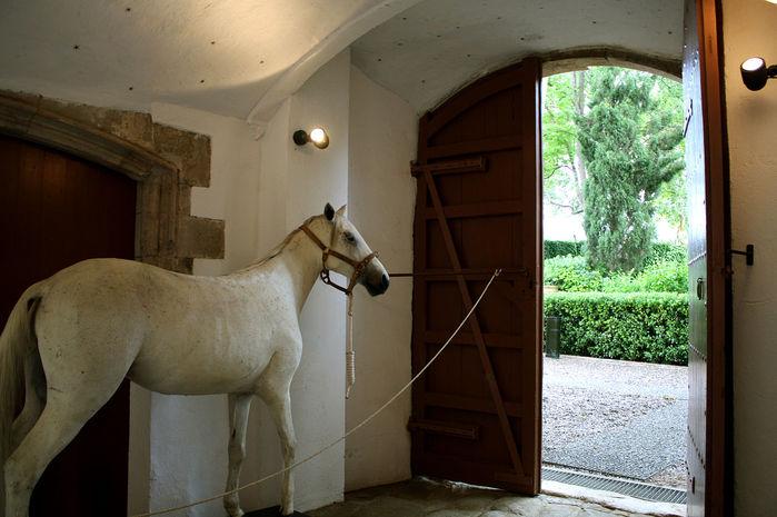 2714816_1280pxCastle_of_Pubol_Horse (700x465, 67Kb)