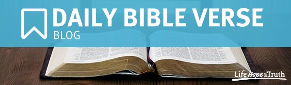 Daily Bible Verse Blog
