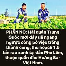Bình Dương 24h - VI PHẠM CHỦ QUYỀN VIỆT NAM, VI PHẠM LUẬT ...